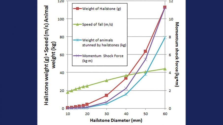 Calculations based off of Martin's (1907) estimates of hailstone sizes which would stun various weights of animals.